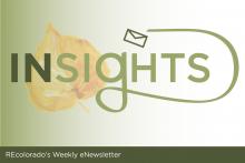 recolorado blog insights
